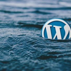 Vulnerabilidad 0-Day en WordPress