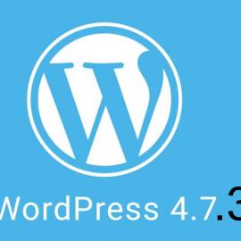 WordPress 4.7.3: Actualización de seguridad y mantenimiento